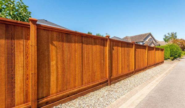 Backyard wood privacy fence